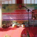 Launching Kawasan Agribisnis Pertanian Perkotaan