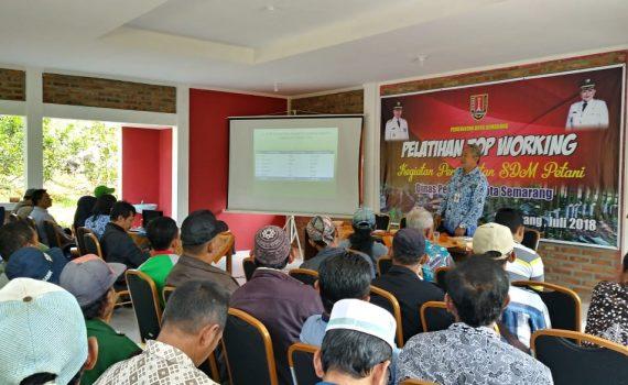 Ciptakan Durian Unggul, DISPERTAN Latih Petani Cara Sambung Pucuk