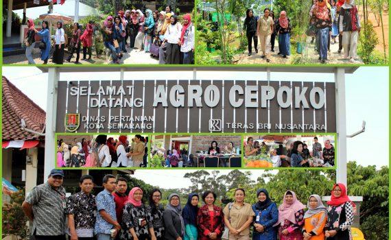 Meet &  Greet TP. PKK Kota Semarang bersama Ibu Tia Hendi (Istri Walikota Semarang)