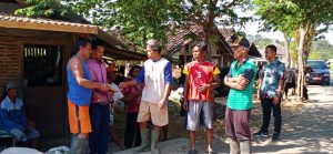 Kabar Gembira Datang Dari Kelompok Tani di Kota Semarang Yang Mendapatkan Hibah Sapi Perah