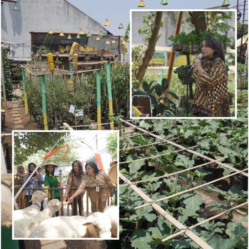 Lomba Pertanian Perkotaan 2019