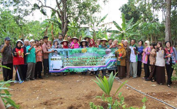 Penyerahan dan penanaman simbolis VUB (Varietas Baru) Kelapa Kopyor oleh BBPPTP Surabaya